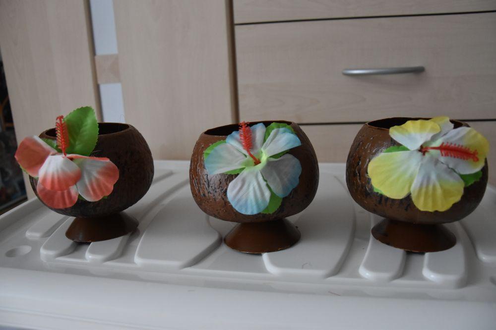 3x verres en plastique noix de coco : 1.- / pce