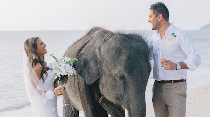 Vous trouverez dans cet article toutes les informations utiles quant au mariage à l'étranger ainsi qu'à la problématique de la nationalité, plus précisément de la naturalisation facilitée.