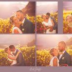 l-amour-est-dans-les-vignes.jpg