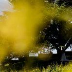 sumodori.comjoonphotographedemariagevaudstsaphorineglisedepalingeshostelleriedeschevreuilsmdcm007.jpg