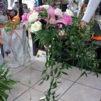 les fleurs pour la cerémonie pour l'allée. y en aura 6. un mariage a l'américaine :-) hi hi hi