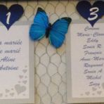 papillon bleu n°1